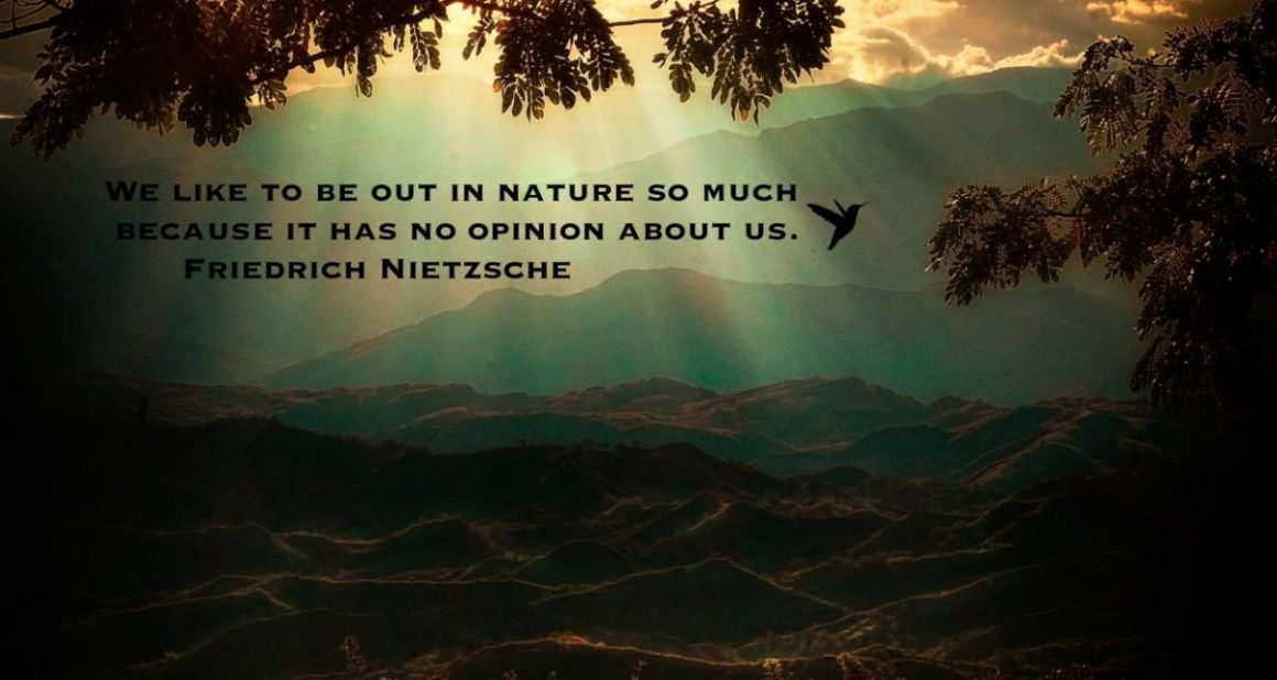 Detached from our True Nature: Nature Deficit Disorder